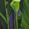 """Loop Brook Study, oil on canvas, 12"""" x 42"""""""
